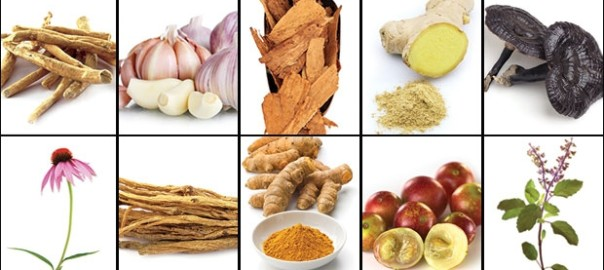 Ginger, Turmeric, Garlic and Others